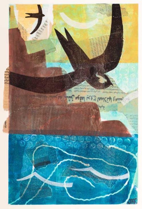 Foker-John-Dead-Sea-Swifts.jpg