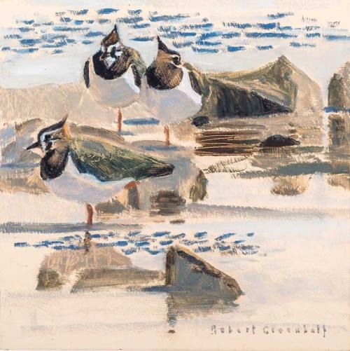 Greenhalf-Robert-Three-Lapwings.jpg