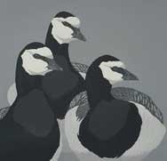 Hatton-John-Barnacle-trio.jpg