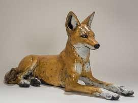 Mackman-Nick-Ethiopean-wolf-lying.jpg