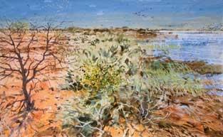 Pearson-Bruce-Winter-Birds,-Senegal.jpg