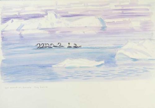 Rees-Darren-Shag-Flotilla,-Rothera-(From-Ice-Bound).jpg