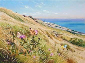 Tratt-Richard-The-Painted-Lady,-Dorset-coast.jpg