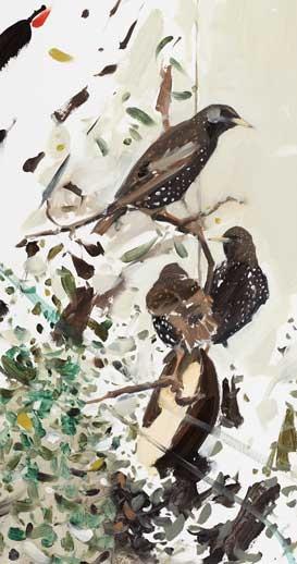 Tyson-Esther-Starlings-on-feeder.jpg