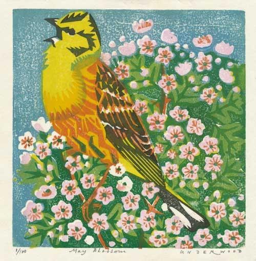 Underwood-Matt-May-Blossom.jpg