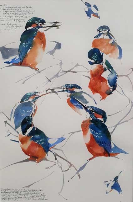 Woodhead-Darren-Kingfisher-courtship-studies.jpg