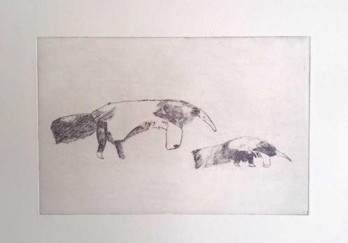 Haslam-Jack-Anteater-and-Baby.jpg