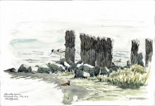 Brodde-Martin-High tide, afternoon, Beltringharder Koog, the Wadden Sea.jpg