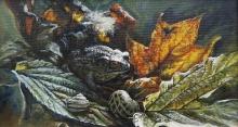 Downham-Madeline-Toad in autumn leaves.jpg