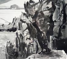 Feu-Leo du-Looking to Bass Rock, Isle of May.jpg