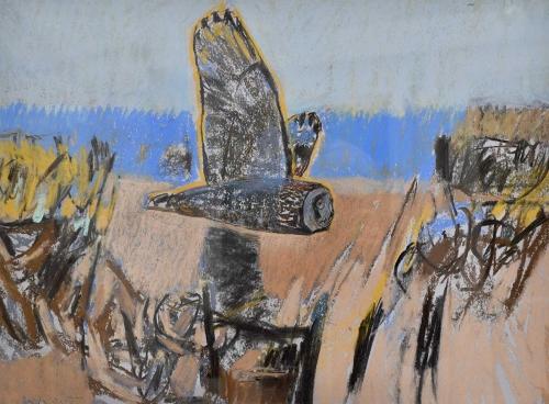 Scott-Dafila-Short-Eared-Owl,-Burwell-Fen.jpg