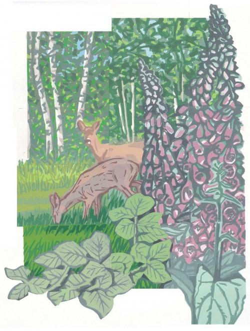 Sinden-Chris-Grazing-Roe-Deer.jpg