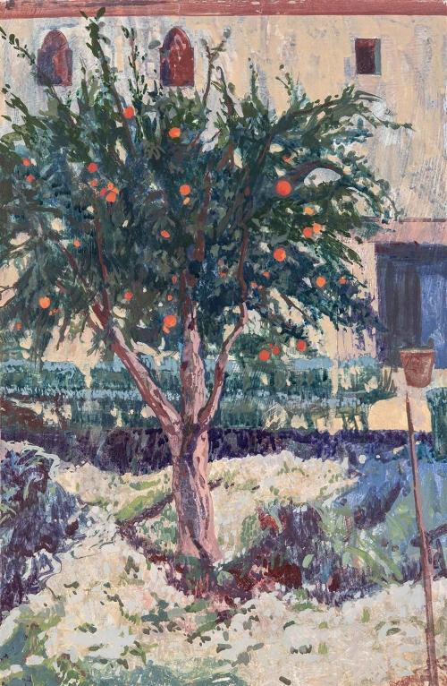 Sorapure-Charlotte-Pomegranate-Tree.jpg