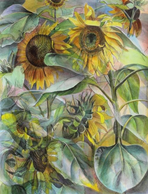 Sorrell-Julia-Sunflowers-In-Shipton-.jpg