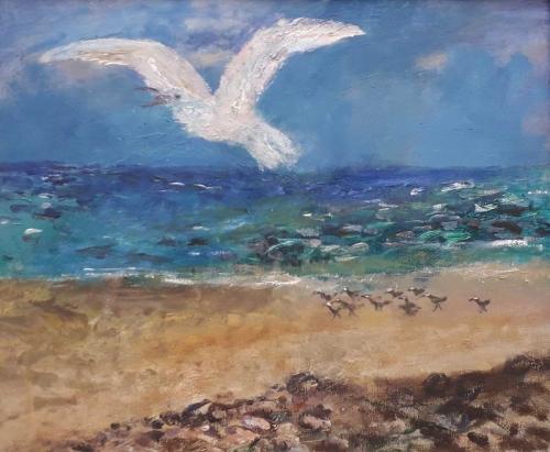 Sorrell-Richard-Seagull.jpg