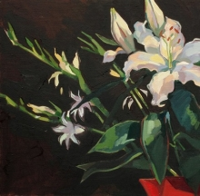 Evening lily, Oil on linen, 40x40cm.jpeg