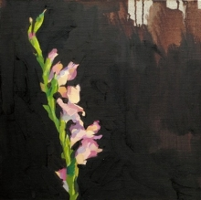 One foot in Eden, Oil on linen, 40x40cm.jpeg