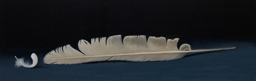 Taber-Jacqueline-Swans-Feathers.jpg