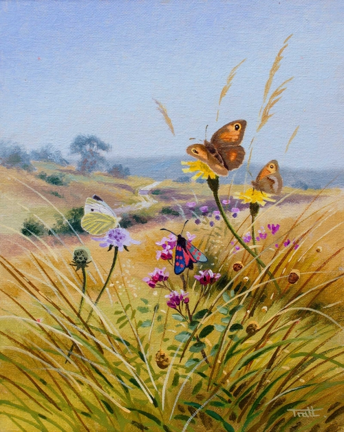 Tratt-Richard-Wildflower-Visitors.jpg