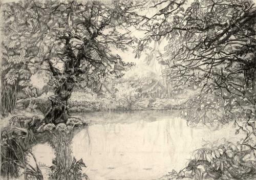 WEB-Littlewood-Natalie-Magic-Landscape.jpg