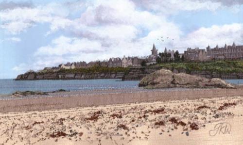 Wakely-Jacque-Seaweed-on-St-Andrews-Beach.jpg