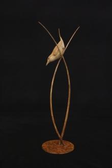 Binder-Adam-Reed Warbler.jpg
