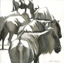 Gemma-Federico-Wildebeest,-Serengeti.jpg