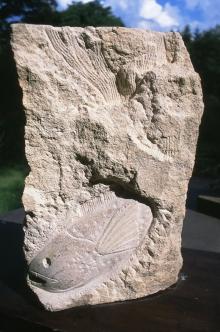 Goold-Madeline-Fish-stone.jpg