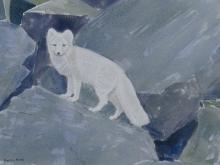 Rees-Darren-White-Fox,-Svalbard.jpg