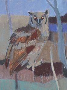 Scott-Dafila-Giant-Eagle-Owl,-Kalahari.jpg