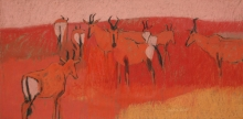 Scott-Dafila-Red-Hartebeest-on-a-Red-Dune.jpg