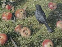 Turvey-Simon-Blackbird and Windfalls.jpg