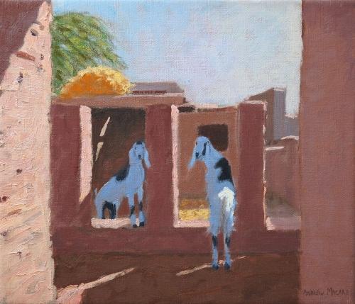 Macara-Andrew-Two-Goats-Rajasthan-India.jpg