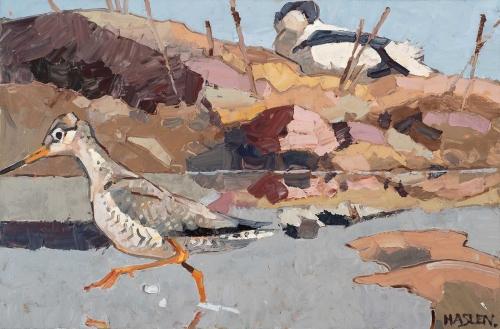 Haslen-Andrew-Spotted-Redshank-hunting.jpg