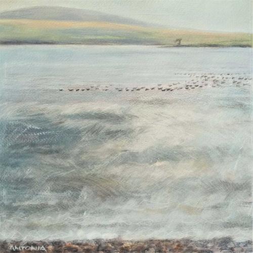 Phillips-Antonia-Noisy-gathering-on-loch-loyal-highlands.jpg