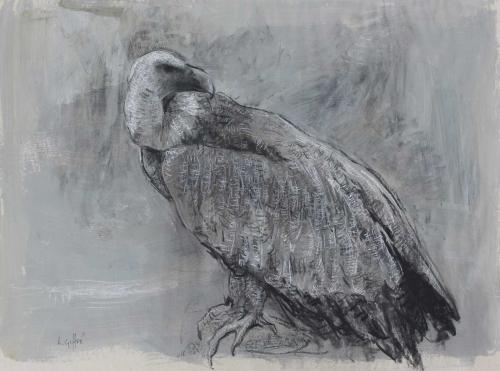 Geffré-Lucie-Vulture.jpg