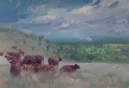 bell-frances-Luing-cattle.jpg