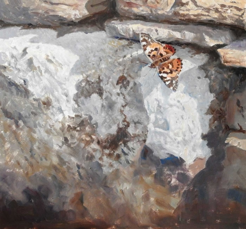 Wootton-Tim-On-The-Cottage-Wall-Painted-Lady.jpg