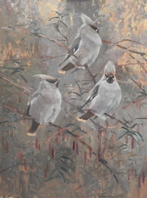 Wootton-Tim-Waxwings-in-Fuchsia.jpg