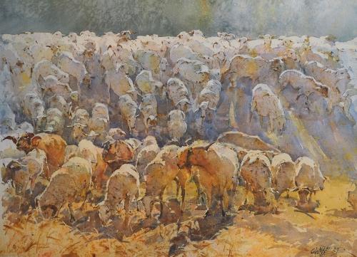 Wynne-Geoffrey-Sheep-May-Safely-Graze.jpg