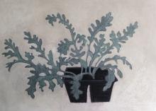 Angela A'Court, Bedding Plants
