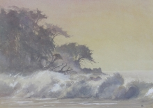 Banning_Paul_Rough waves Grand Riverier Trinidad.jpg