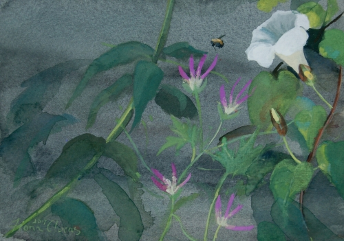 Bee_And_Bindweed.jpg