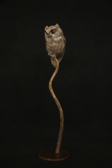 Binder-Adam-Scops Owl.jpg