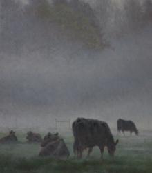 Blacks Cows in the Morning.jpg