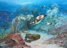Borello-Wendy-Sea life, Mozambique Channel.jpg