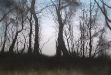 Brammeld-David-Winter-Skyline.jpg