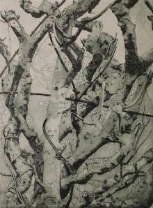 Bristow-Victoria-Winter Hedgerow.jpg
