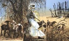 Bruce-Pearson-Sahel.jpg