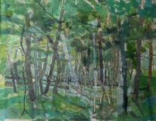 Caplin-Richard-Secret Forest.jpg